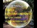 Питер Мейер - Угроза экспоненциального возрастания задолженности 25/3/19