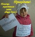Личный фотоальбом Ольги Колюкиной