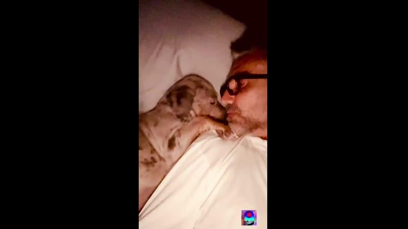 Социальные сети Публикация в Instagram Stories Алехандро ›› за 25 12 2020
