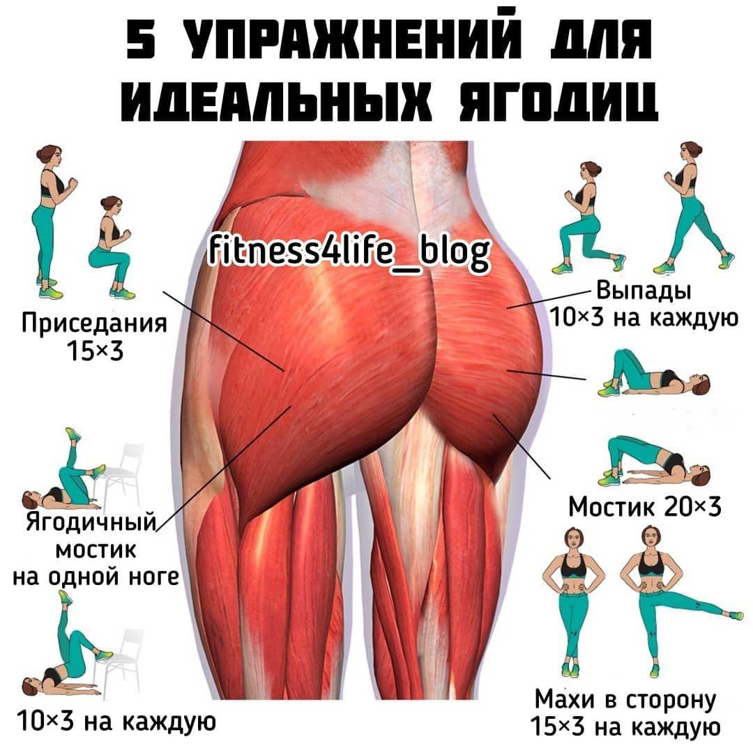 Подборка отличных упражнений на каждый день!