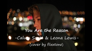 You Are the Reason - Calum Scott & Leona Lewis (cover by flixxtone)