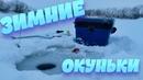 НАШЕЛ ЯМУ И ПОНЕСЛАСЬ РАЗДАЧА ОКУНЯ! НАДО БЫЛО СРАЗУ ТАК ЛОВИТЬ! Зимняя рыбалка 🥶