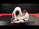 Jeff Glover - Torreando Counter with Arm Drag or Rollover Sweep (BJJ Library Seminar) jeff glover - torreando counter with arm d