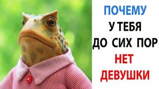 Мемы 2021 года. Лучшие Мемчики за день  Смешные Животные с Озвучкой #shorts