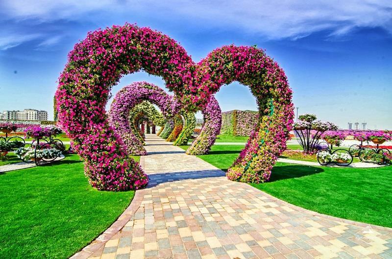 Цветочный чудо-парк в Дубае, ОАЭ