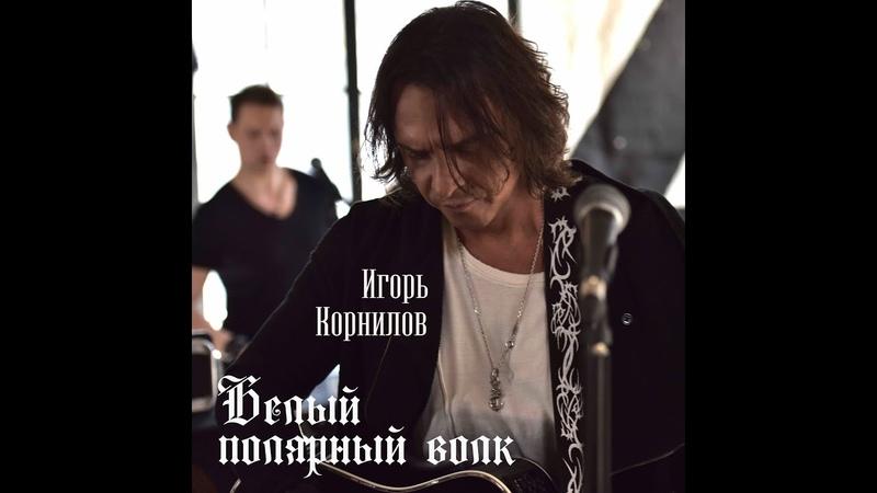 Игорь Корнилов БЕЛЫЙ ПОЛЯРНЫЙ ВОЛК ПРЕМЬЕРА MOOD VIDEO