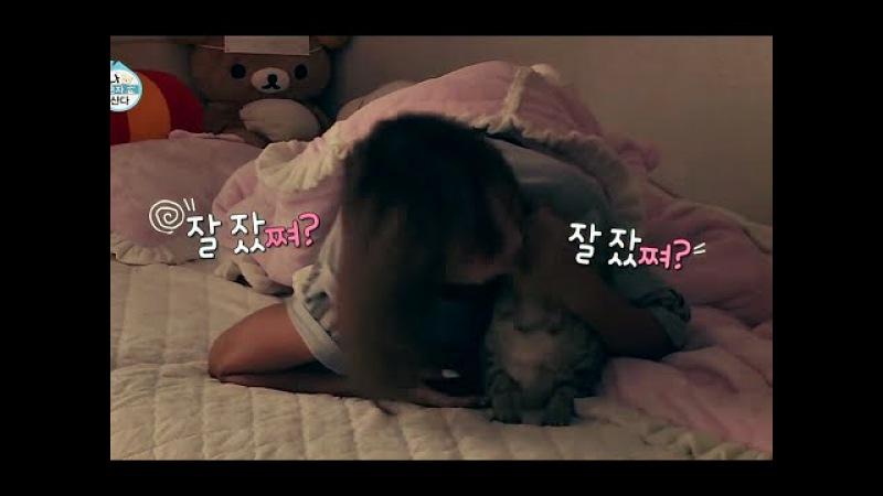 [HOT] 효린, 남다른 고양이 사랑에 폭풍 애교 보여줘 천상 여자! [나 혼자 산다] 201