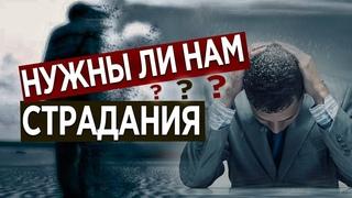 #59 Нужны ли нам страдания? - Алексей Осокин - Библия 365 (2 сезон)