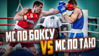 МС по боксу против МС по тайскому боксу на Чемпионате области по боксу среди мужчин