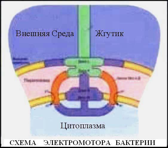 Владимир Пятибрат Глубинная книга Избранное - Страница 6 I1ztVO31-As