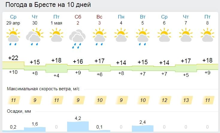 В среду — лето, в четверг — весна. Все о погоде в Бресте на очень короткой рабочей неделе