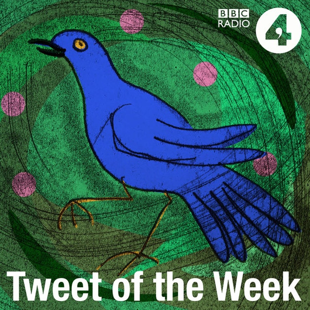 BBC Radio 4: Tweet of the Week
