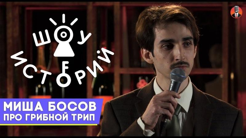 Миша Босов Про грибной трип Шоу Историй