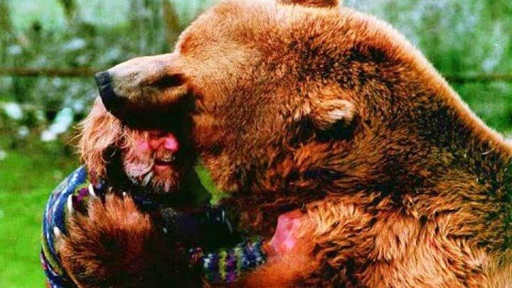 Медведь убил дрессировщика медведь убийца Ужасное нападение медведя на человека