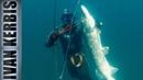«Крокодилы Тувы 2019» Подводная охота на щуку Трейлер