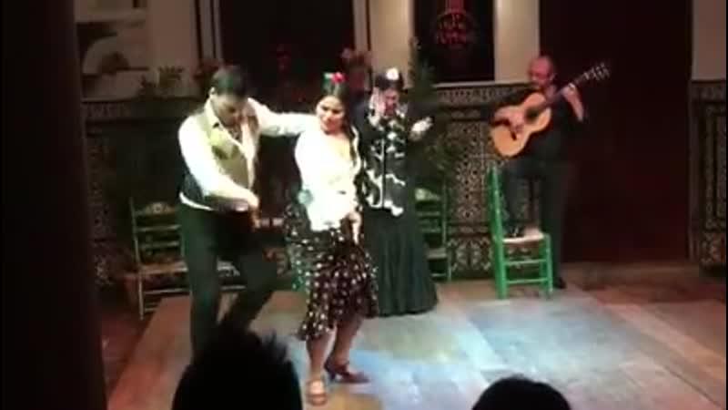 La Casa del Flamenco. Baile Juan Polvillo y Maria Moreno.