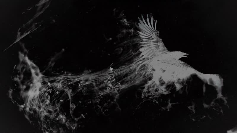 Вольный Ветер Псков Саби Белый Ворон