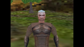 Witcher 3 but it's on the PS1...