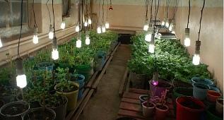 Хороший урожай начинается в лаборатории
