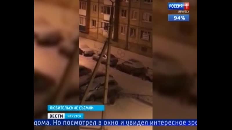 Иркутянин с белым котом на плече решил порадовать своих соседей Мужчина среди ночи убрал снег с автомобилей