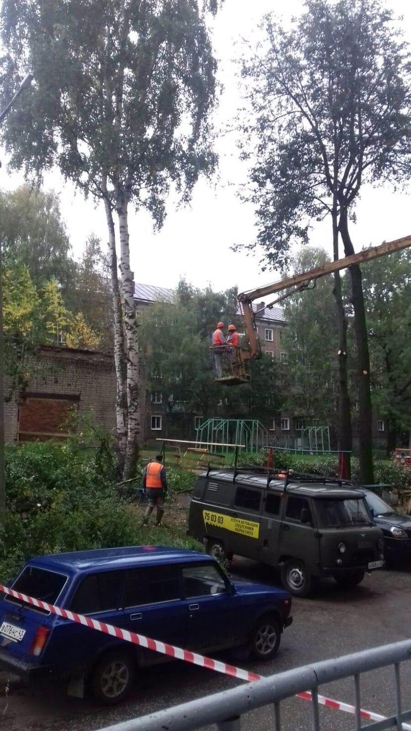 Ул. К. Либкнехта, 37. Обрезка деревьев.