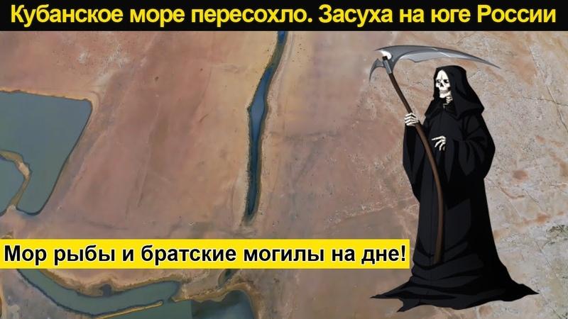Засуха в России 2020 Краснодарское водохранилище пересохло Братские могилы под водой Мор рыбы