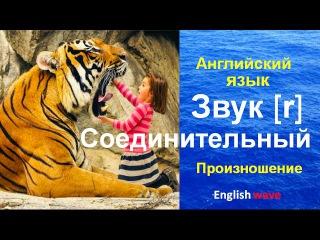 Соединительный звук [r]. Английский язык. Произношение.