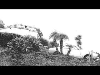 Timber Timbre - Run From Me