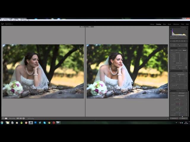 сколько людей тонирование фото в лайтруме до и после этом, однако, одно