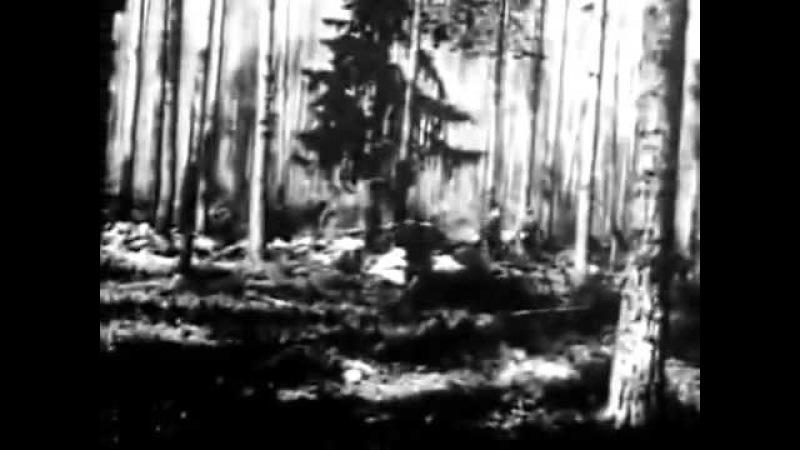 Русская армия в первой мировой войне хроника