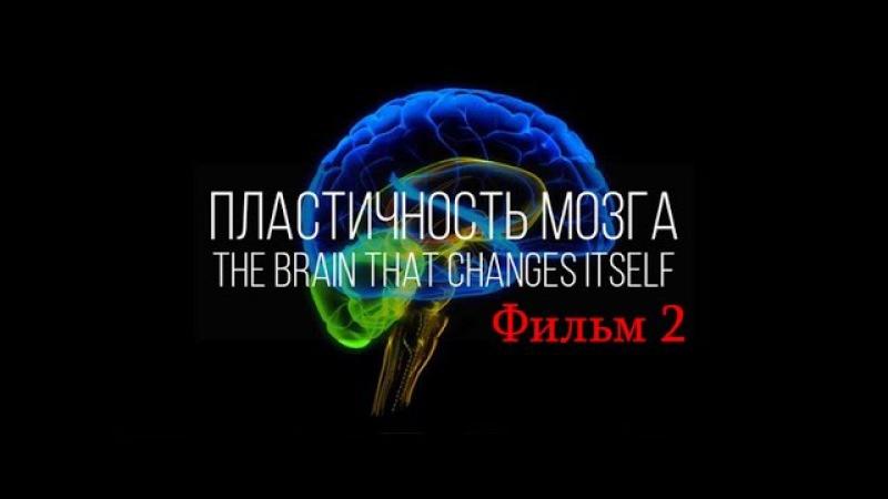 Как поменять мозг Нейропластичность Мозга фильм 2