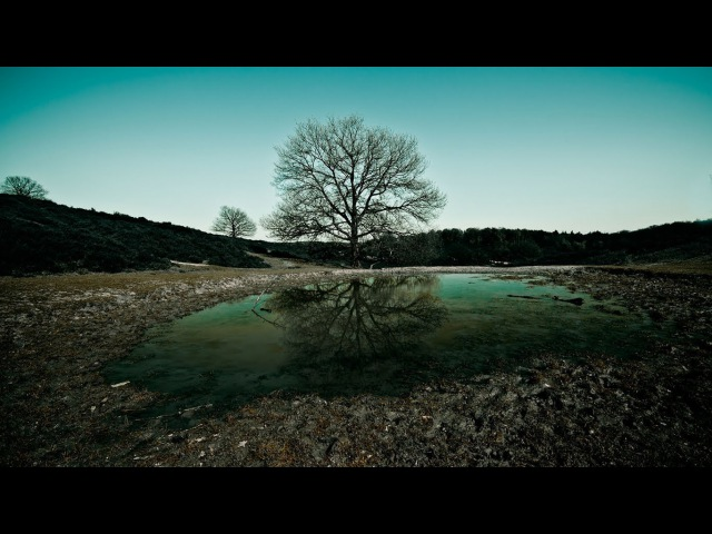 Pentak Stream. Gothic II Night of the Raven Возвращение 2.0 (The Returning 2.0) Часть 35
