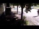 Профессиональный полив клумб Комсомольск на Днепре