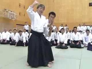 第11回 国際合気道大会 五十嵐和男師範(ダイジェスト)