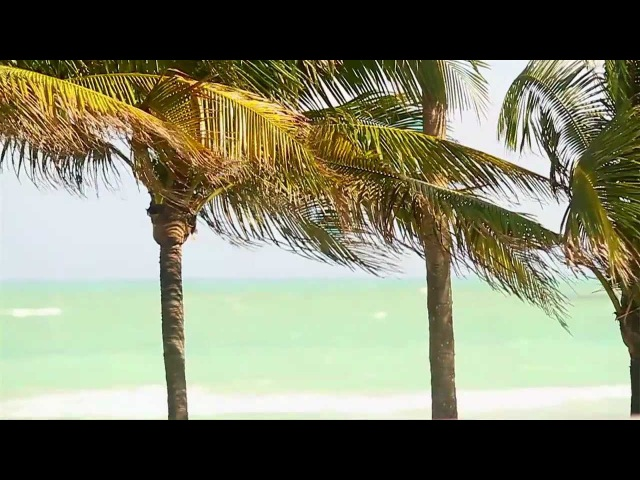 Ryan Leslie - 5 Minute Freshen Up (Official Music Video)