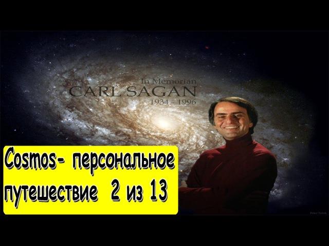 Эпизод 2 Один голос в космической фуге One Voice in the Cosmic Fugue 'gbpjl 2 jlby ujkjc d rjcvbxtcrjq aeut one voice in th