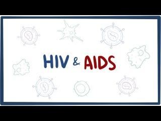 ВИЧ и СПИД - причины, симптомы, механизмы, диагностика и лечение