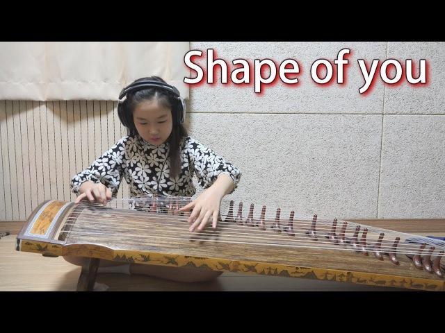 Shape of you (초등학생이 연주하는 가야금) gayageum cover