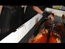 Spirit Cooking? Politics Satanic Rituals - David Icke