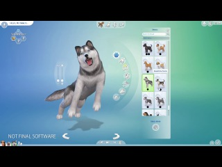 The Sims 4 Cats & Dogs - Selecting Through Breeds