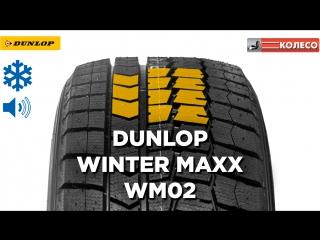 Обзор зимней шины dunlop winter maxx wm02. колесо