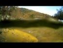 Форелевое хозяйство.Абхазия.Черная речка