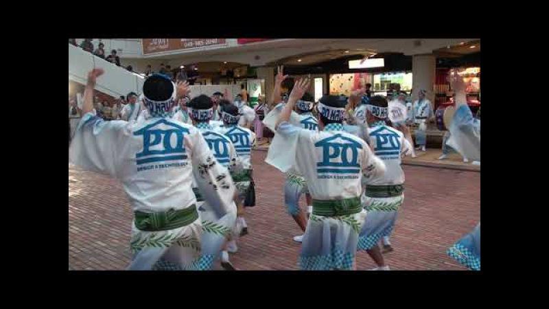 PO連 ~2017 8 19 第33回南越谷阿波踊り~