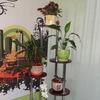 полки для цветов и комнатных растений