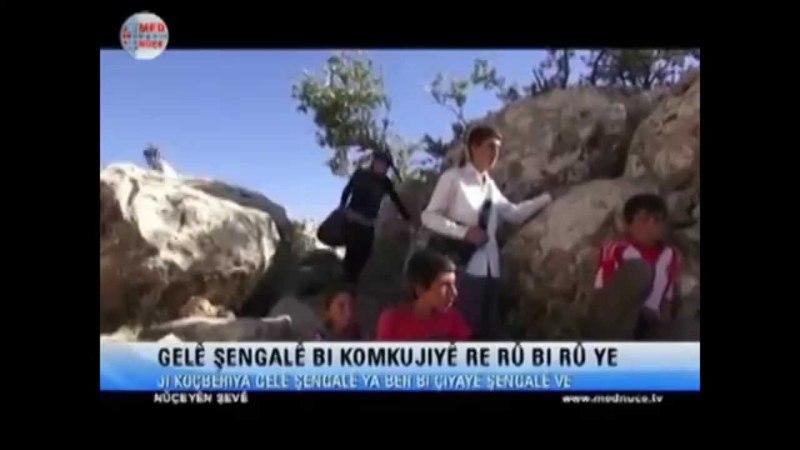 Hozan Beko Şengal Yastar Ya Hawar