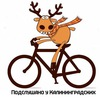 Подслушано у велосипедистов  Калининград