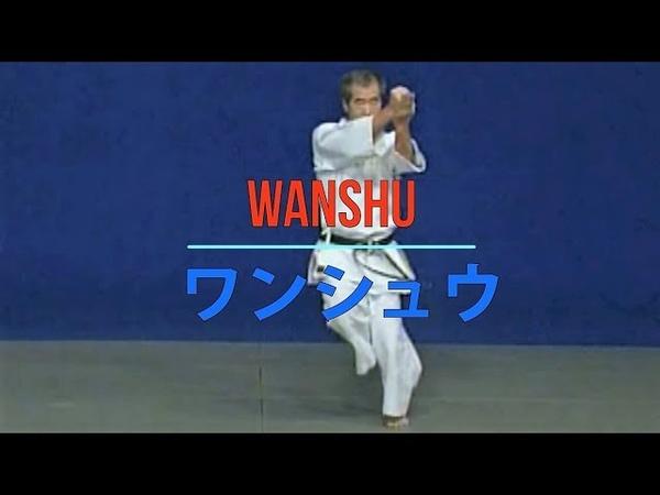WADO - RYU kata WANSHU Bunkai 和道流 形 分解 (ワンシュウ)