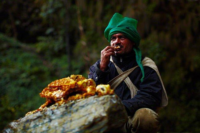 Сбор дикого мёда в Непале, изображение №7