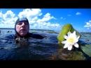Заплыв 19 07 (Летняя гроза. Вивальди)