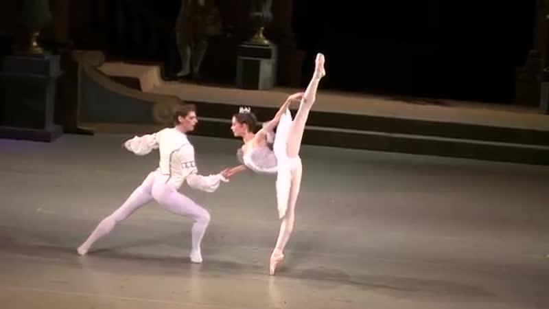 Шкляров Владимир, Ширинкина Мария. Спящая красавица (3-й акт)